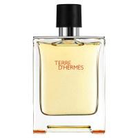 Hermes Terre D'Hermes edt 100ml