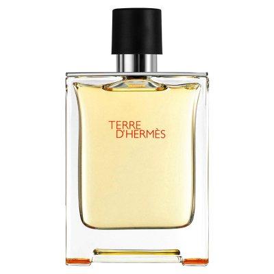 Hermes Terre D'Hermes edt 50ml